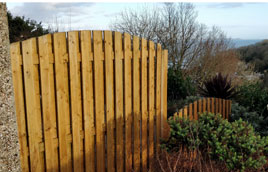 Looe fence repair