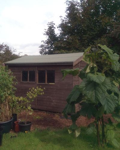 new roofing felt on shed